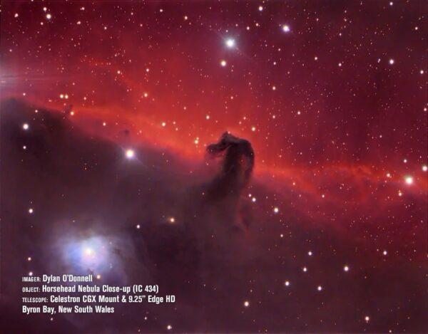 Телескоп CGX 925 EdgeHD